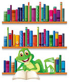 A smiling frog reading a book Stock Image