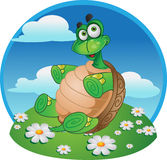 Smiling fun tortoise on color background stock image