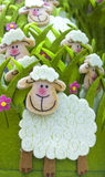 Smiling funny sheep Stock Images
