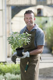 Smiling gardener Stock Image