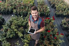 Smiling gardener in apron with tablet working in garden. High angle view of smiling gardener in apron with tablet working in garden Stock Image