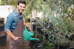 Smiling gardener in apron with watering can watering plants in garden stock photo