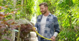 Smiling gardener with hose. Cheerful man doing horticulture job and watering flowers with hose in the garden stock footage