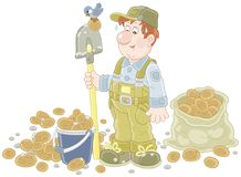 Farmer with his potato crop. Smiling gardener with a spade and potatoes in a bucket and a sack, vector illustration in a cartoon style Royalty Free Stock Image