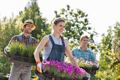 Smiling gardeners carrying crates with flower pots at plant nursery Stock Photography