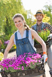 Smiling gardeners carrying flower pots in crates at plant nursery Royalty Free Stock Image