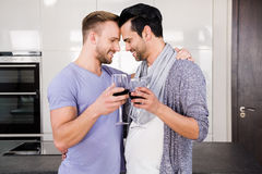 Smiling gay couple toasting with red wine Royalty Free Stock Photos