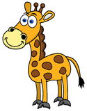Smiling giraffe Stock Images