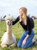 Smiling girl with alpaca animal sitting in a summer green meadow. royalty free stock image