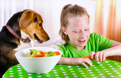 Smiling Girl and beagle dog. royalty free stock photo