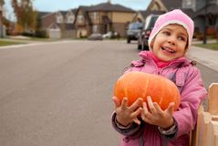 Smiling girl bears pumpkin in hands Royalty Free Stock Photos