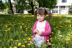 A smiling girl with the dandelion. A smiling girl sitting on the dandelion field with the dandelion garland Stock Photography