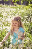 Smiling girl with dandelion flowers Royalty Free Stock Image