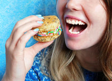 Smiling girl is eating cookie. On a blue background royalty free stock photo
