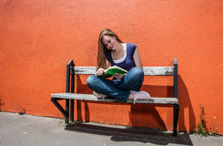 Smiling girl enjoying reading book for a love of literature Stock Image