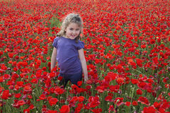 Smiling girl in flowers. Little smiling girl in casual outfit standing among poppy field and posing while looking at camera Stock Photo