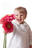 Smiling girl with gerbers Stock Photography