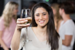 Smiling girl having a glass of wine with her friends Stock Photos