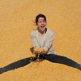 Smiling girl at heap of corn after harvest stock photos
