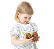 The smiling girl holding cedar cones Stock Photo