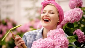 Smiling girl with large buds of pink flowers. Happy woman gardener with flowers. Flower care and watering. Woman care of stock video