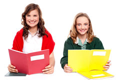 Smiling girl learning from school books Stock Image