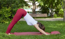 Smiling girl in the park exercise on the yoga mat, high lunge. Portrait royalty free stock photo