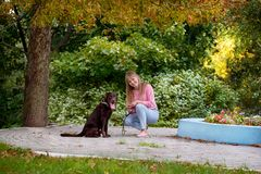Smiling girl relaxing with dog. Labrador sitting next royalty free stock images