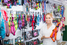 Smiling girl seller advising on leashes for pets. In pet shop Stock Image