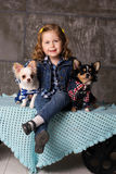 Smiling girl is sitting with chuhuahua dogs Stock Image
