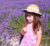 Smiling girl sniffing flowers in a lavender field Royalty Free Stock Images