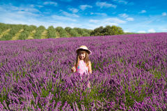 Smiling girl sniffing flowers in a lavender field Stock Images