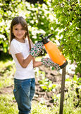 Smiling girl spraying small apple tree with fertilizers Stock Image
