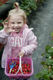Smiling girl with strawberry basket in the field Royalty Free Stock Photos