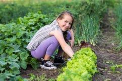 Smiling girl working on a garden Stock Photos