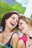 Smiling girls Royalty Free Stock Photos