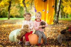 Smiling girls in the autumn park. Smiling girls sitting on a big pumpkin in the autumn park Royalty Free Stock Photography