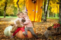 Smiling girls in the autumn park. Smiling girls sitting on a big pumpkin in the autumn park Royalty Free Stock Image