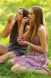 Smiling girls sharing strawberries outdoor Stock Photos