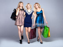 Smiling girls shopping. Stock Photography