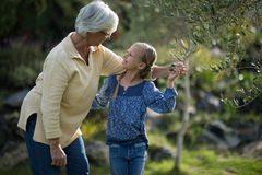 Smiling granddaughter and grandmother interacting with each other. In garden Royalty Free Stock Photos