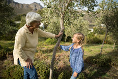 Smiling granddaughter and grandmother interacting with each other. In garden Stock Image