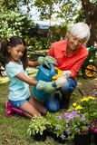 Smiling granddaughter and grandmother watering plants stock images