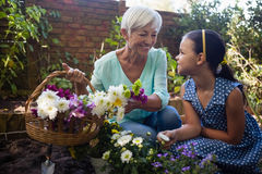 Smiling grandmother with granddaughter holding flower basket. Smiling grandmother holding flower basket while talking to granddaughter in backyard Stock Image