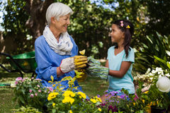 Smiling grandmother and granddaughter looking at each other while holding flower. In garden Royalty Free Stock Images