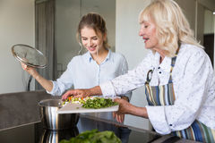 Smiling grandmother putting vegetables in a pot while cooking. Together with her granddaughter Stock Image