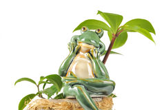 Smiling Green Frog Figurine Sitting on Flower Pot. A smiling green frog figurine sitting on a flower pot under a green plant on a white background Royalty Free Stock Photos