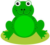 A smiling green frog Royalty Free Stock Photo
