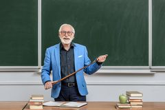 Smiling grey hair professor holding. Wooden pointer royalty free stock photos