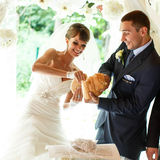 Smiling groom and bride is  tearing bred on the  background whit Royalty Free Stock Photography
